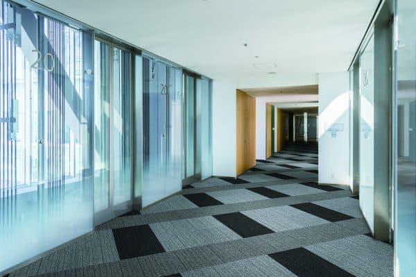 SONY DSC carpets